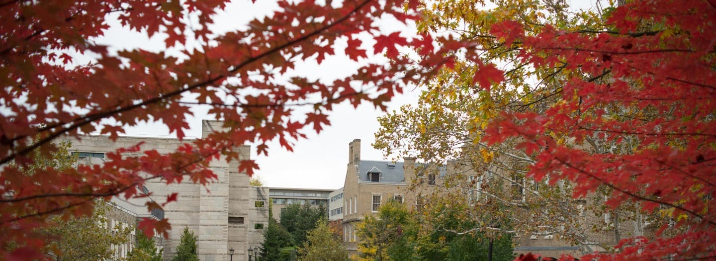 college buildings with fall colors on the trees nearby